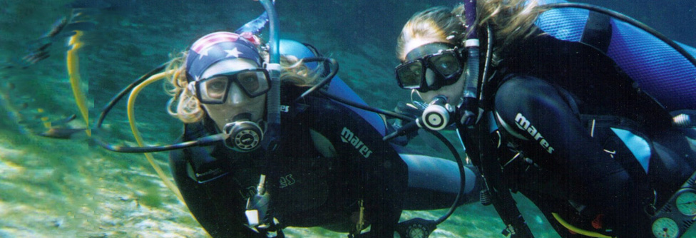 scuba dive crystal river