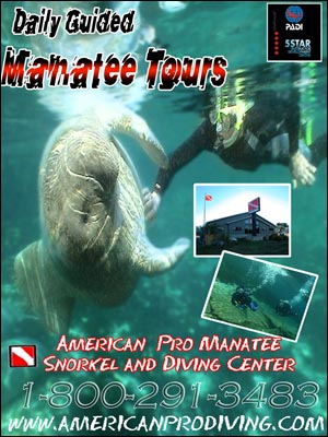 daily manatee tours florida