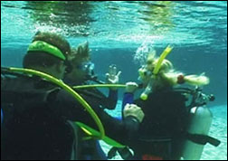 australian padi student scuba divers manual pdf free download